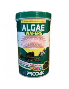 PRODAC ALGAE WAFERS PECES DE FONDO