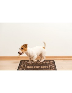 "ALFOMBRA - FELPUDO ""WIPE YOUR PAWS"" INTERIOR"