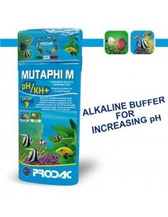 MUTAPHI M PH+/KH+ (AUMENTA EL PH)